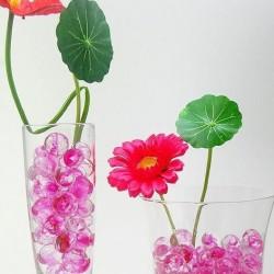 3D vandens kristalai